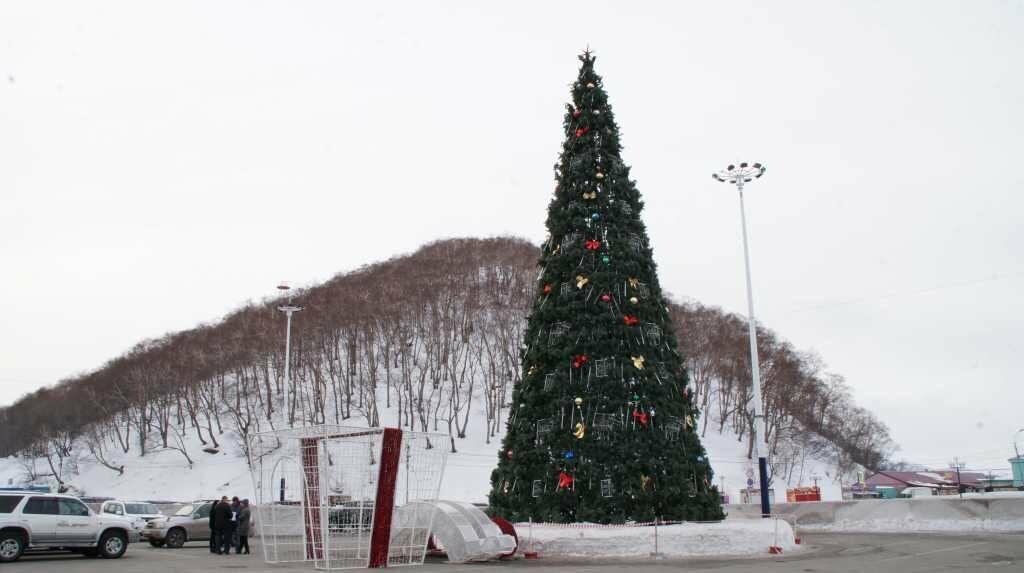 Колонна сказочных персонажей во главе с Дедом Морозом пройдет по центру Петропавловска, фото-1