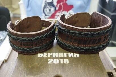 На Камчатке подготовили приз четвероногому чемпиону «Берингии-2018», фото-1