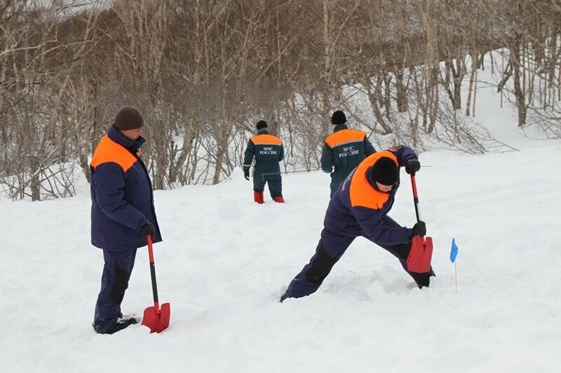 На Камчатке спасатели тренировались искать людей в снегу, фото-2
