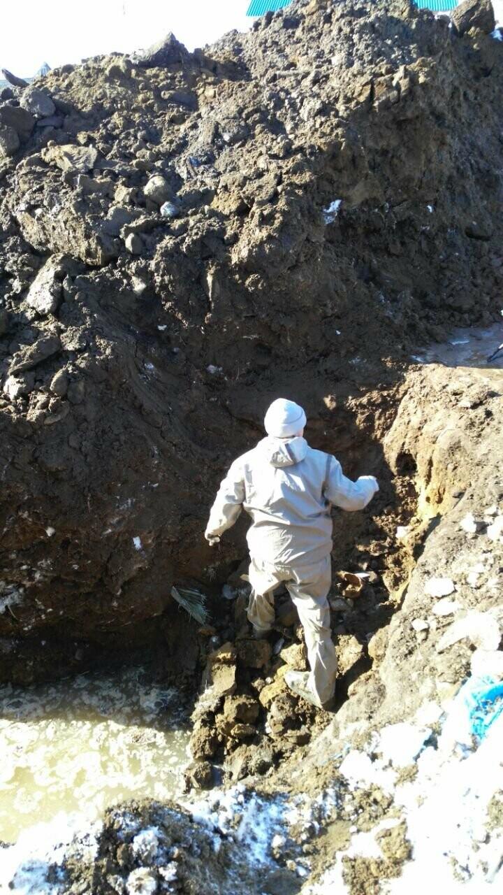 Страшная находка - житель Камчатки признался в убийстве и показал, где спрятал труп 7 лет назад, фото-1