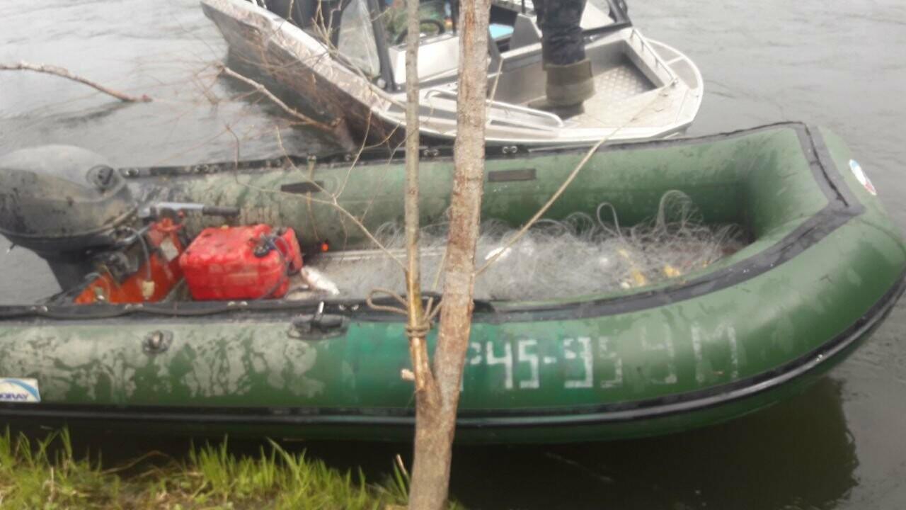 На Камчатке поймали браконьеров с тонной рыбы, фото-1