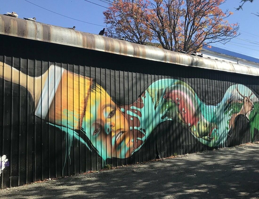 Лучших граффитчиков выбрали в Петропавловске, фото-7