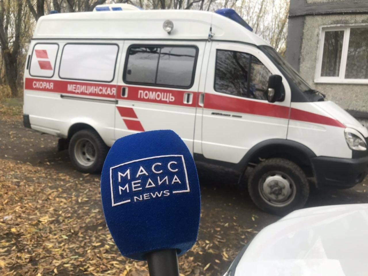 Медведица напала на жителя Камчатки, фото-1