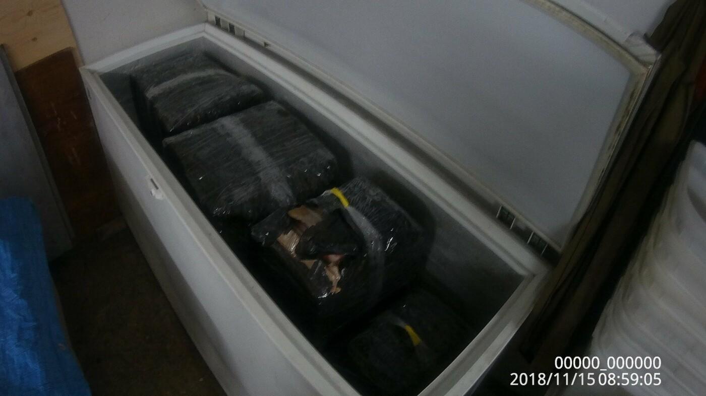В Петропавловске в гаражном кооперативе нашли подпольный крабовый цех, фото-2