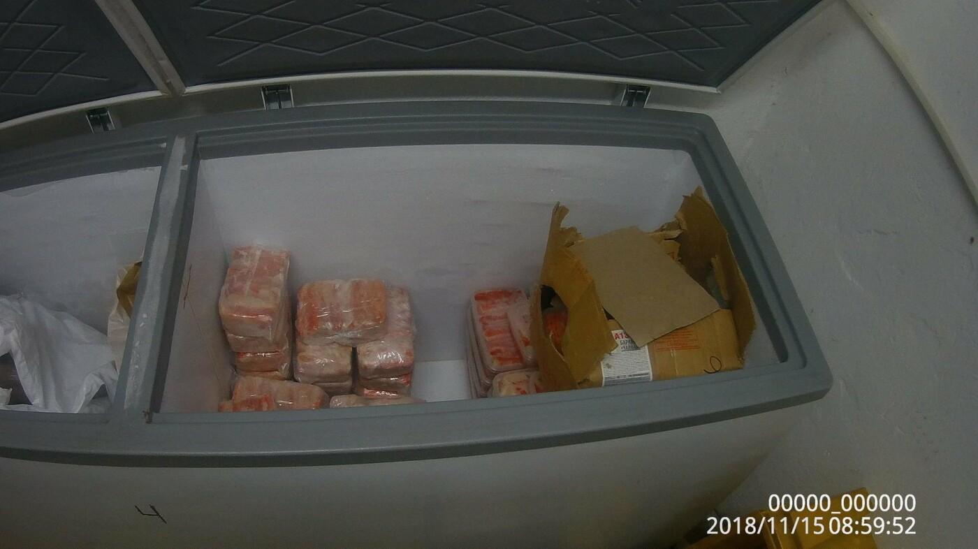 В Петропавловске в гаражном кооперативе нашли подпольный крабовый цех, фото-4