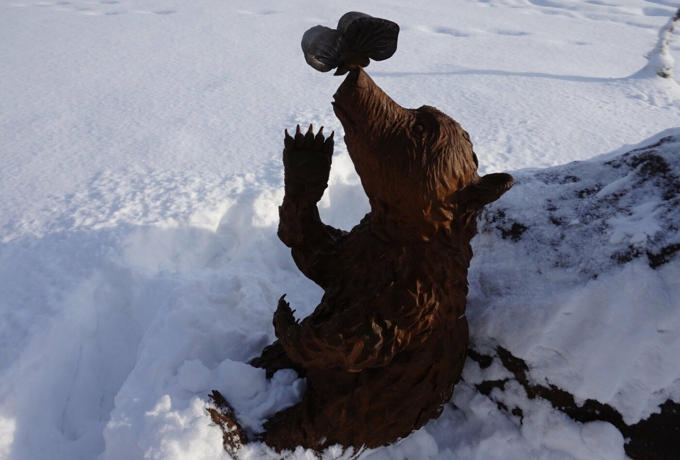 Косолапый арт-объект появился на Медвежке, фото-8