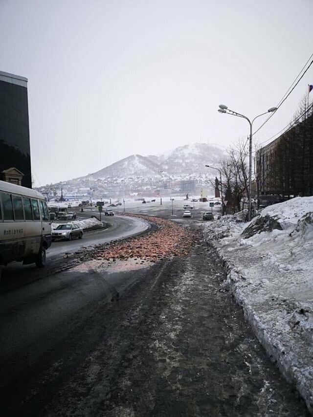 8 тонн рыбных отходов рассыпали у здания правительства Камчатки, фото-1